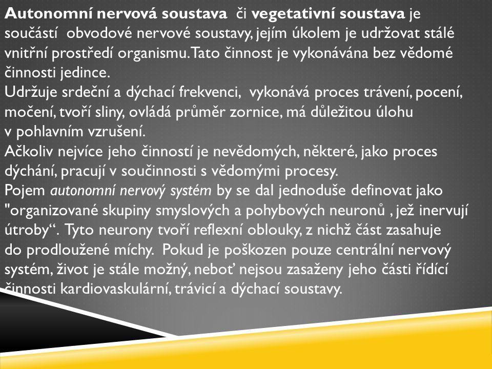 Autonomní nervová soustava či vegetativní soustava je součástí obvodové nervové soustavy, jejím úkolem je udržovat stálé vnitřní prostředí organismu.
