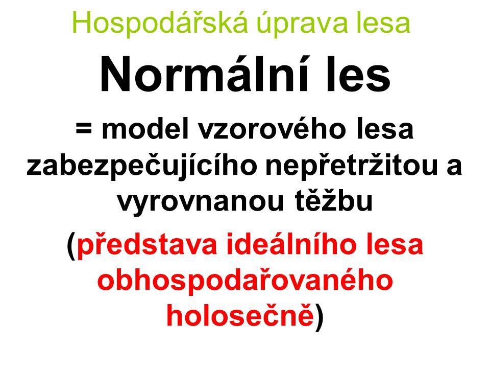 Hospodářská úprava lesa Normální les = model vzorového lesa zabezpečujícího nepřetržitou a vyrovnanou těžbu (představa ideálního lesa obhospodařovaného holosečně)