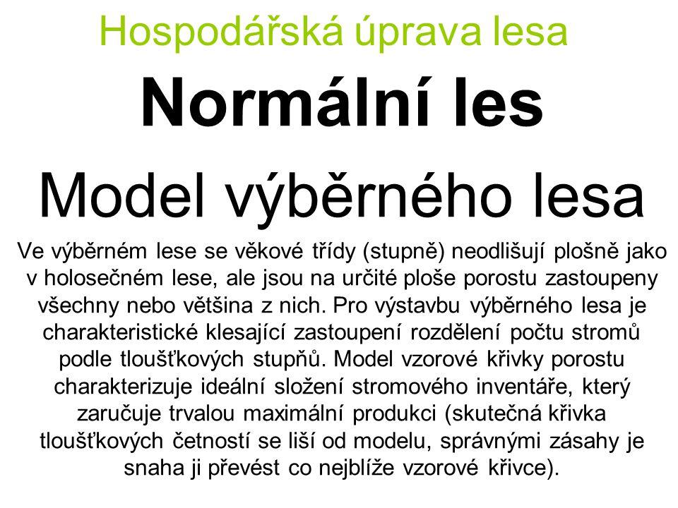 Hospodářská úprava lesa Normální les Model výběrného lesa Ve výběrném lese se věkové třídy (stupně) neodlišují plošně jako v holosečném lese, ale jsou na určité ploše porostu zastoupeny všechny nebo většina z nich.