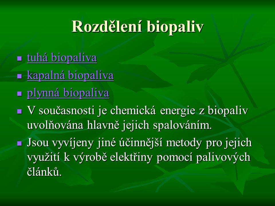 Rozdělení biopaliv tuhá biopaliva tuhá biopaliva tuhá biopaliva tuhá biopaliva kapalná biopaliva kapalná biopaliva kapalná biopaliva kapalná biopaliva