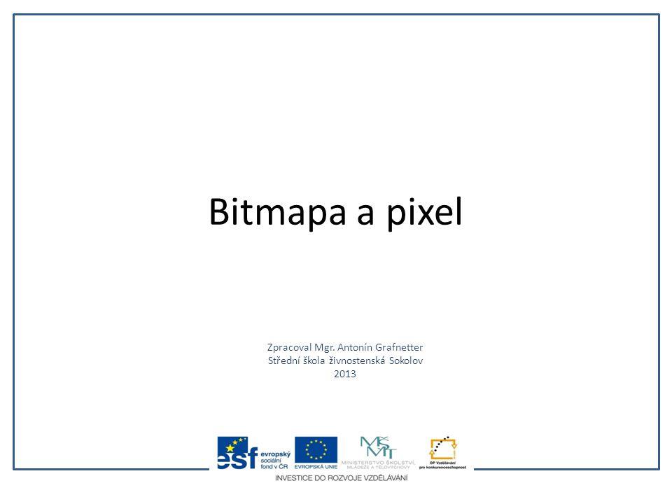 Bitmapa a pixel Zpracoval Mgr. Antonín Grafnetter Střední škola živnostenská Sokolov 2013