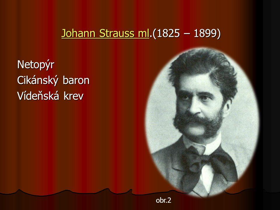 Johann Strauss mlJohann Strauss ml.(1825 – 1899) Johann Strauss mlNetopýr Cikánský baron Vídeňská krev obr.2