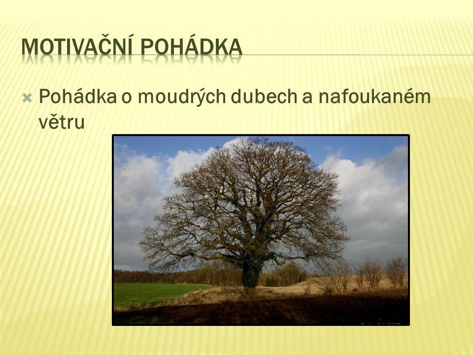  Pohádka o moudrých dubech a nafoukaném větru