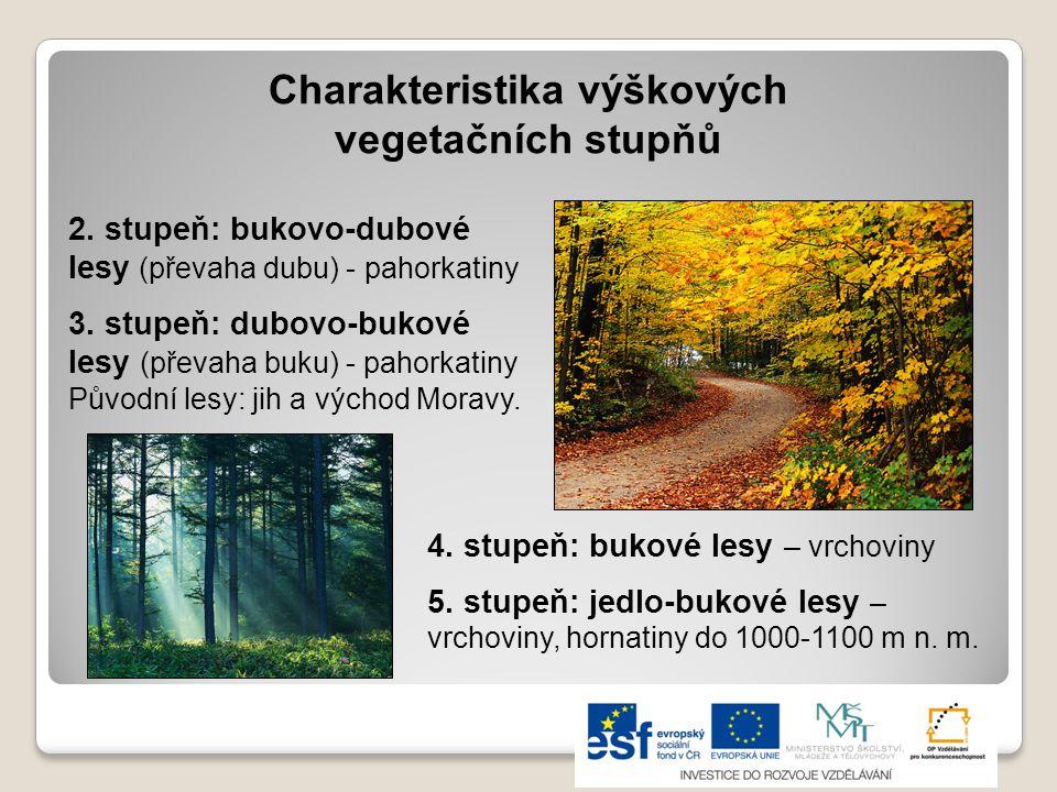 Charakteristika výškových vegetačních stupňů 2.