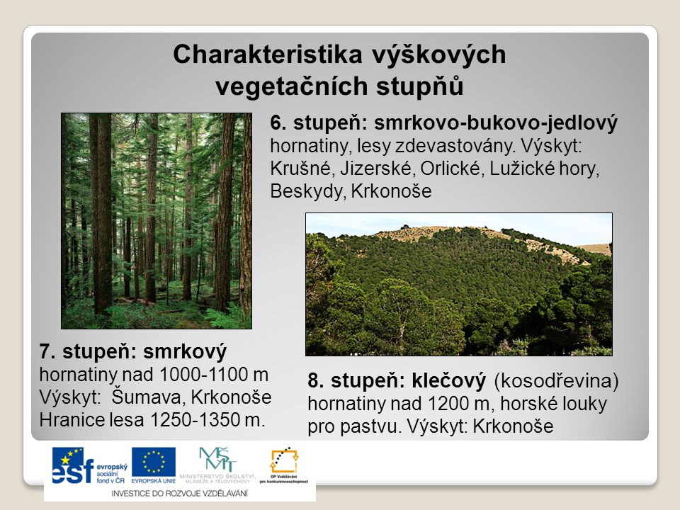 Charakteristika výškových vegetačních stupňů 6.