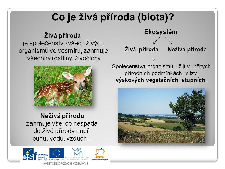 Co je živá příroda (biota).