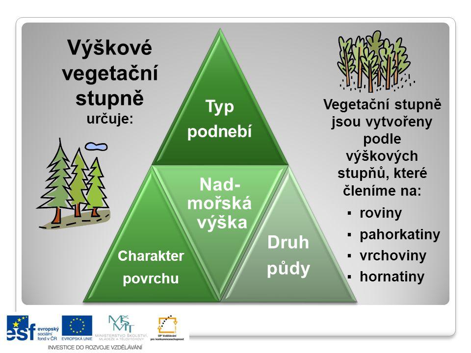 Úkol: Upřesni, co všechno určuje výškové vegetační stupně Nadmořská výška Výšková členitost Typ podnebíDruh půdy Nížiny, pánve kotliny 20 % plochy ČR do 300 m n.