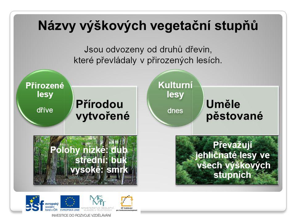 Názvy výškových vegetační stupňů Jsou odvozeny od druhů dřevin, které převládaly v přirozených lesích.