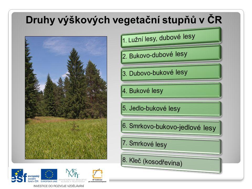 Druhy výškových vegetační stupňů v ČR