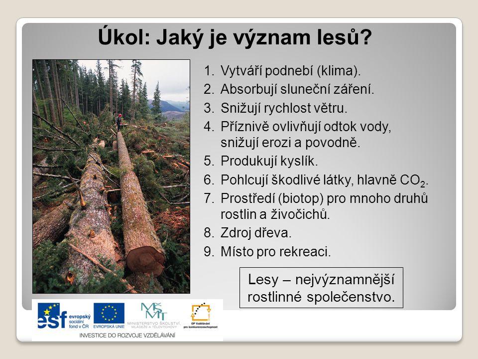 Charakteristika výškových vegetačních stupňů 1.Stupeň: lužní lesy (údolní nivy), dubové lesy (nížiny) Z původních lesů jen zbytky, nyní nejúrodnější zemědělské plochy.