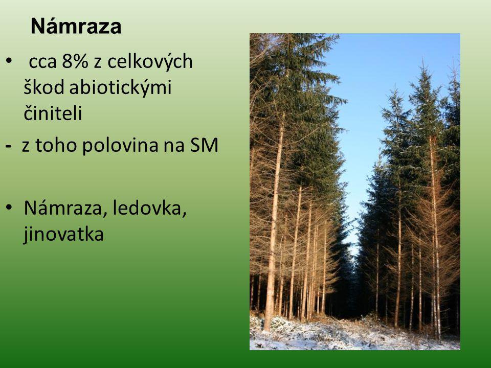 Ochrana lesa a přírodního prostředí Otázky k opakování 1.Charakterizujte námrazu.