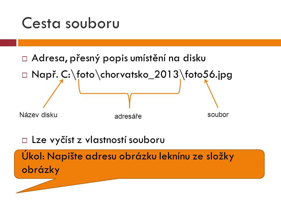 Cesta souboru  Adresa, přesný popis umístění na disku  Např. C:\foto\chorvatsko_2013\foto56.jpg  Lze vyčíst z vlastností souboru Úkol: Napište adre