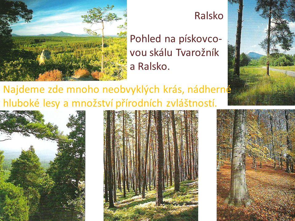 Ralsko Pohled na pískovco- vou skálu Tvarožník a Ralsko. Najdeme zde mnoho neobvyklých krás, nádherné hluboké lesy a množství přírodních zvláštností.