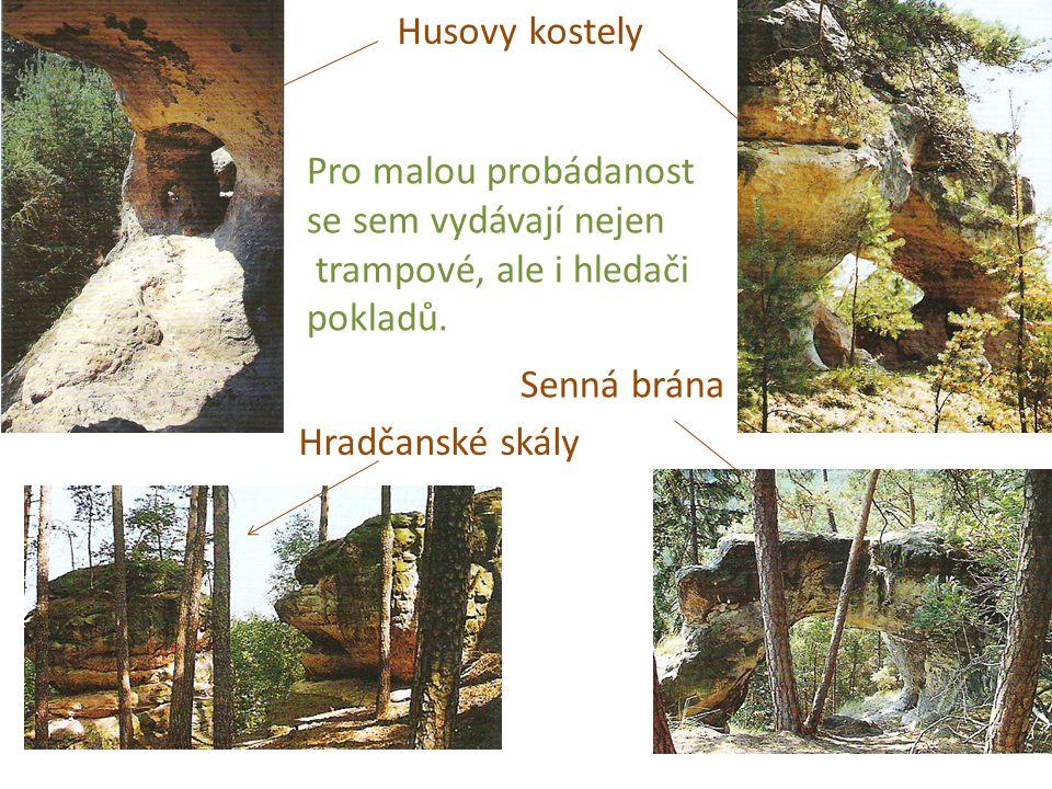 Husovy kostely Hradčanské skály Senná brána Pro malou probádanost se sem vydávají nejen trampové, ale i hledači pokladů.