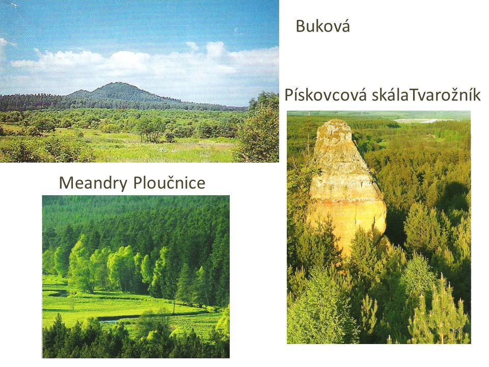 Meandry Ploučnice Asi na 10 kilometrech vzdušnou čarou od Hradčanského mostu do České Lípy vytváří meandrující Ploučnice třicetikilometrový tok.