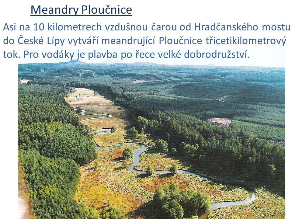 Meandry Ploučnice Asi na 10 kilometrech vzdušnou čarou od Hradčanského mostu do České Lípy vytváří meandrující Ploučnice třicetikilometrový tok. Pro v