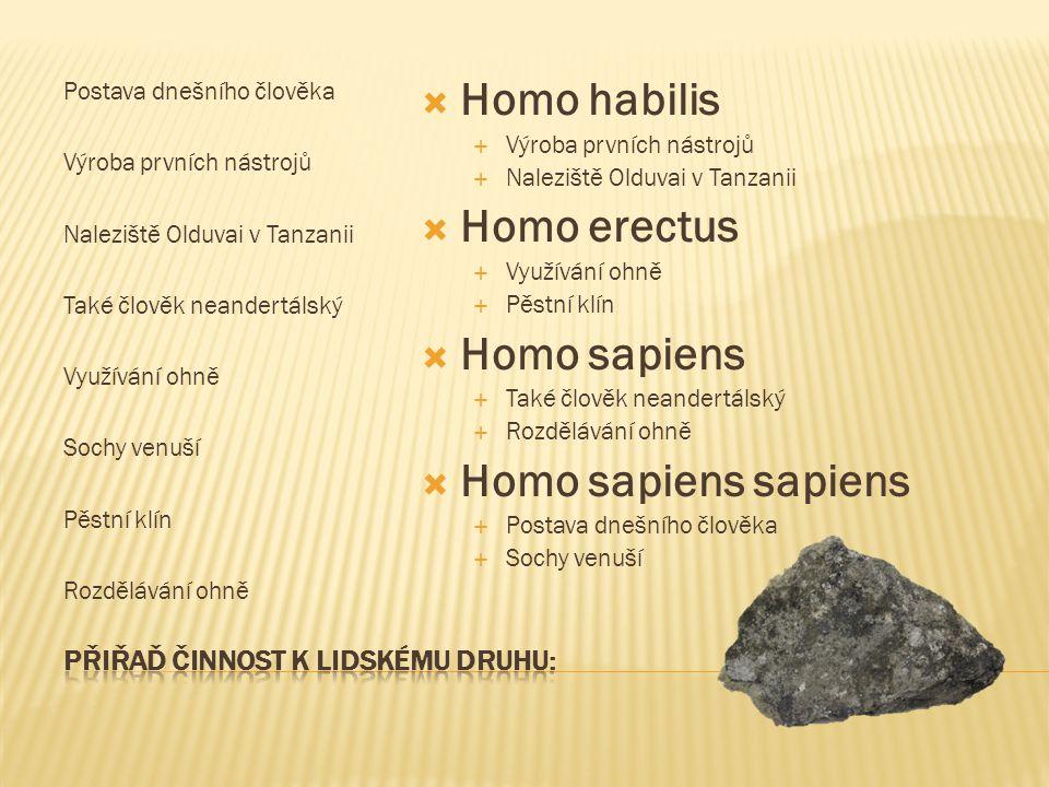 Postava dnešního člověka Výroba prvních nástrojů Naleziště Olduvai v Tanzanii Také člověk neandertálský Využívání ohně Sochy venuší Pěstní klín Rozděl