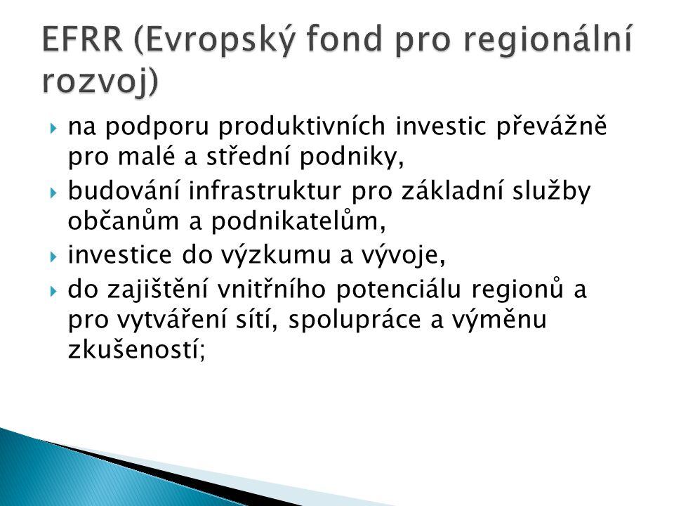  na podporu produktivních investic převážně pro malé a střední podniky,  budování infrastruktur pro základní služby občanům a podnikatelům,  investice do výzkumu a vývoje,  do zajištění vnitřního potenciálu regionů a pro vytváření sítí, spolupráce a výměnu zkušeností;