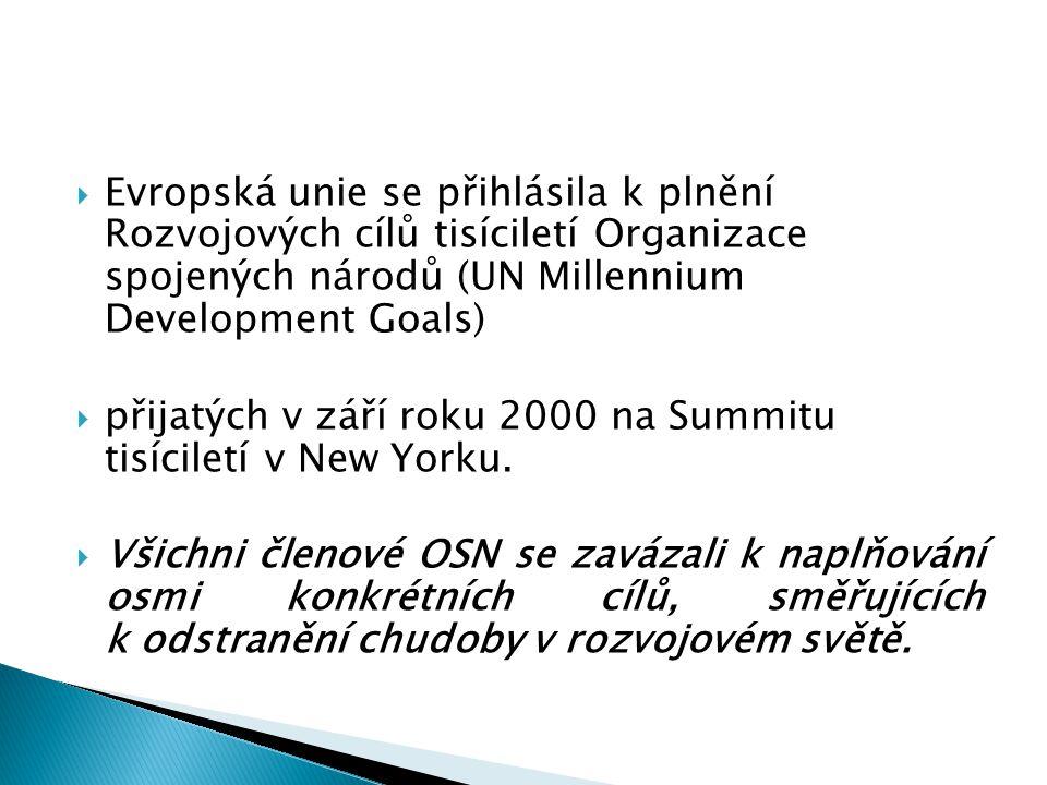  Evropská unie se přihlásila k plnění Rozvojových cílů tisíciletí Organizace spojených národů (UN Millennium Development Goals)  přijatých v září roku 2000 na Summitu tisíciletí v New Yorku.
