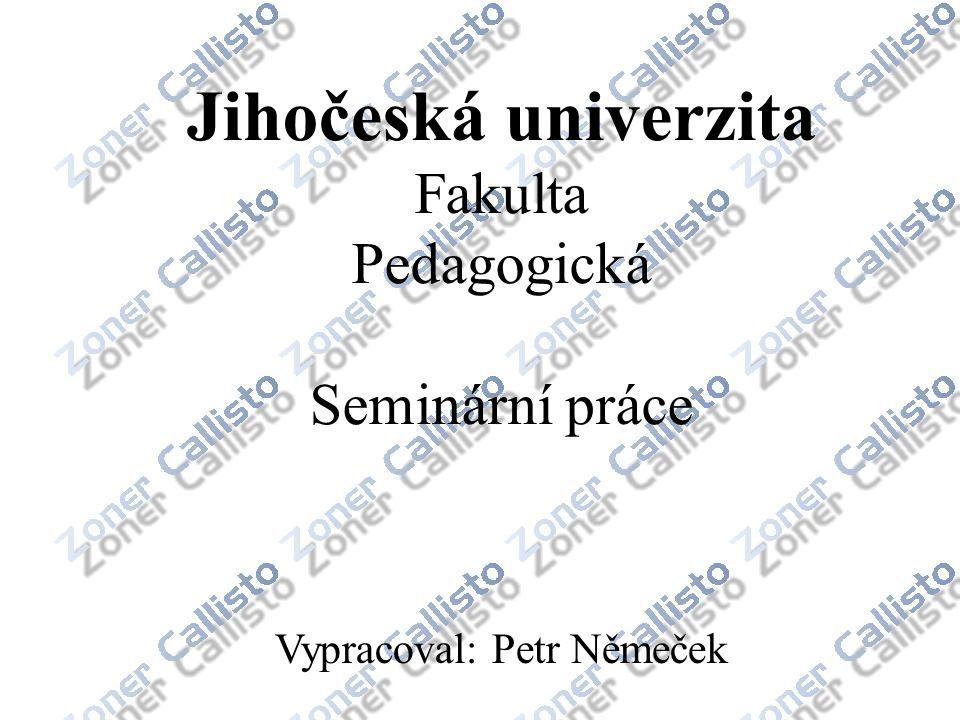 Jihočeská univerzita Fakulta Pedagogická Seminární práce Vypracoval: Petr Němeček