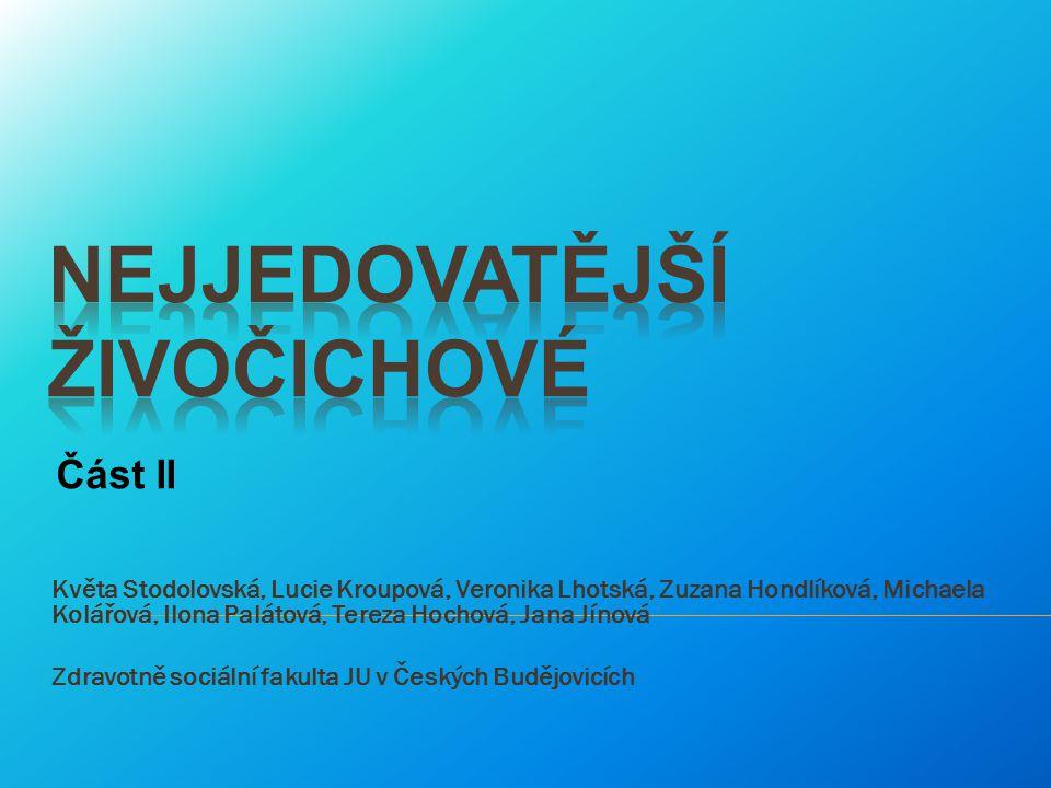 Květa Stodolovská, Lucie Kroupová, Veronika Lhotská, Zuzana Hondlíková, Michaela Kolářová, Ilona Palátová, Tereza Hochová, Jana Jínová Zdravotně sociá