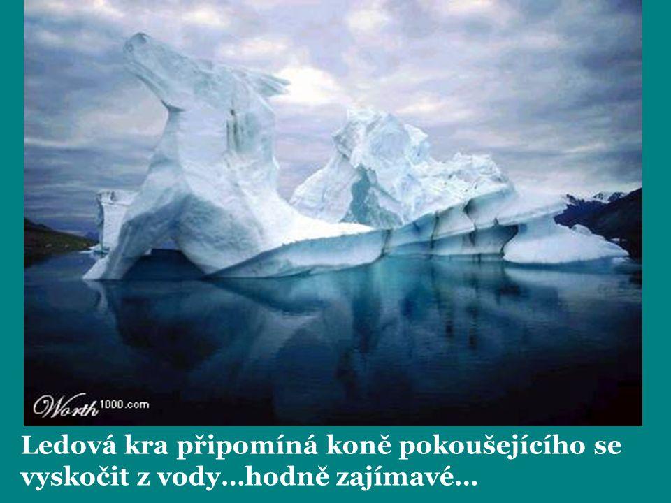 Ledová kra připomíná koně pokoušejícího se vyskočit z vody…hodně zajímavé…