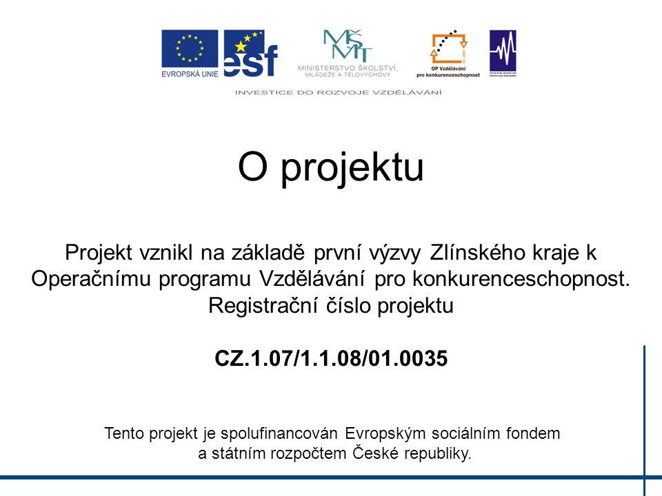 O projektu Projekt vznikl na základě první výzvy Zlínského kraje k Operačnímu programu Vzdělávání pro konkurenceschopnost. Registrační číslo projektu