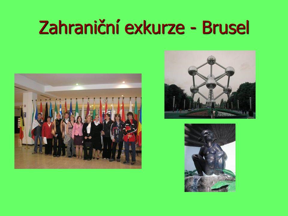 Zahraniční exkurze - Brusel