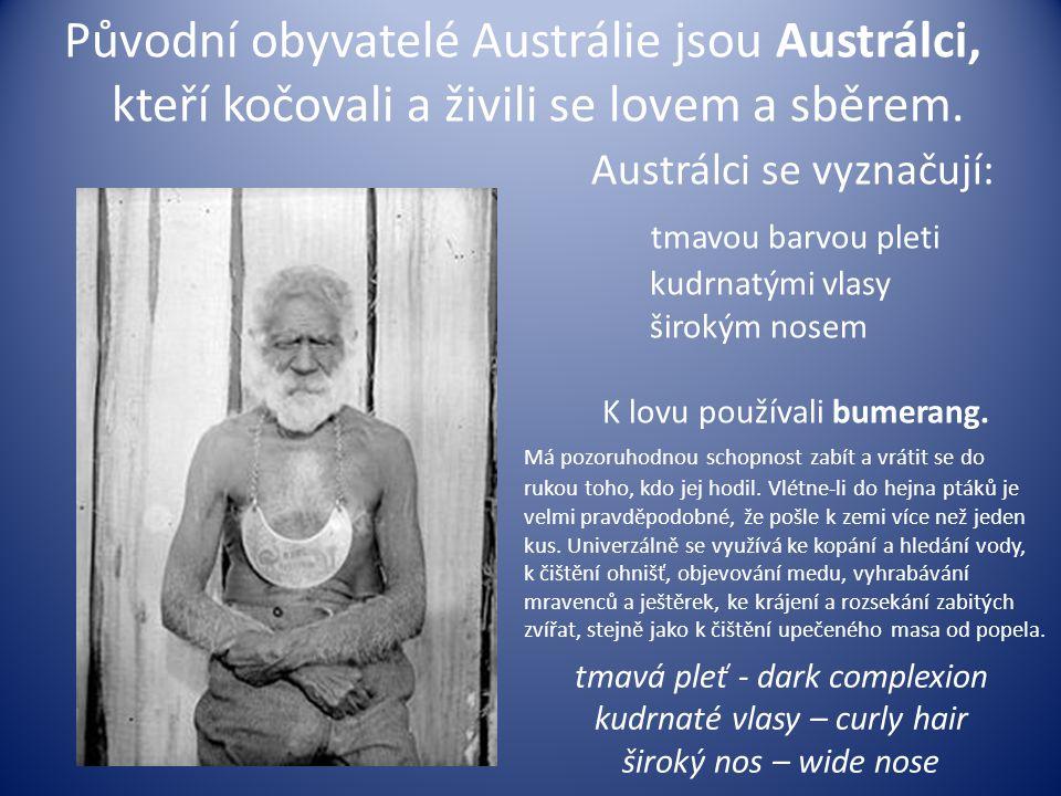 Původní obyvatelé Austrálie jsou Austrálci, kteří kočovali a živili se lovem a sběrem. Austrálci se vyznačují: tmavou barvou pleti kudrnatými vlasy ši