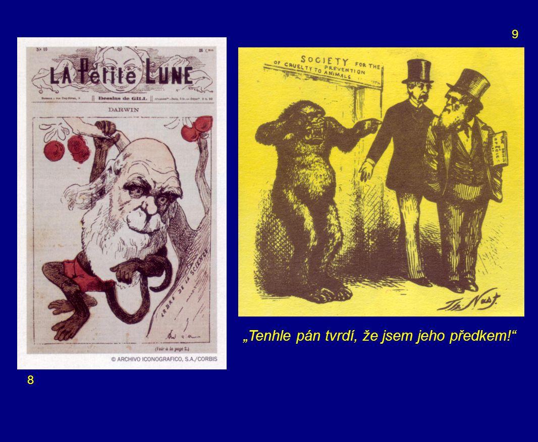 Text k obrázkům: 1 – úvod 2 – úvod 3 – Titul – Darwin 4 – Charles Darwin patří mezi nejvýznamnější vědce lidské historie.
