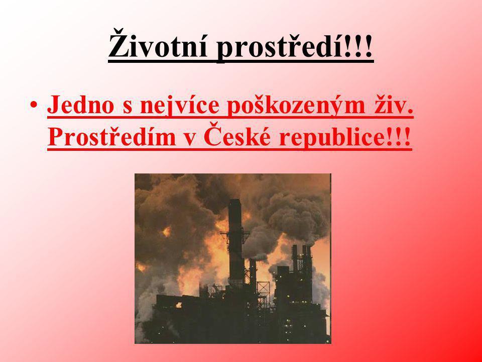 Životní prostředí!!! Jedno s nejvíce poškozeným živ. Prostředím v České republice!!!