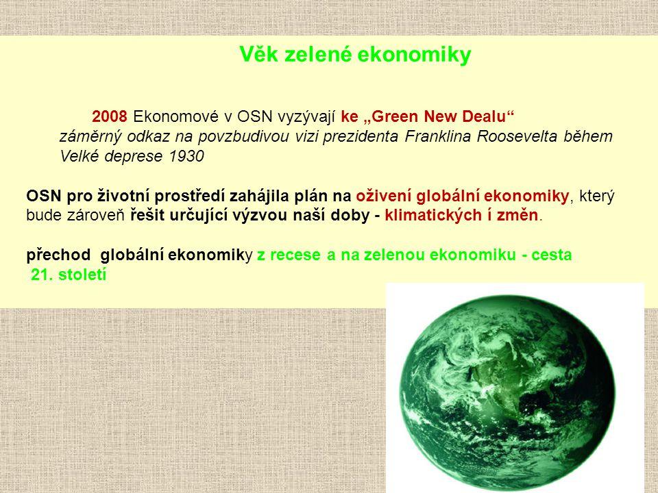 """Věk zelené ekonomiky 2008 Ekonomové v OSN vyzývají ke """"Green New Dealu"""" záměrný odkaz na povzbudivou vizi prezidenta Franklina Roosevelta během Velké"""