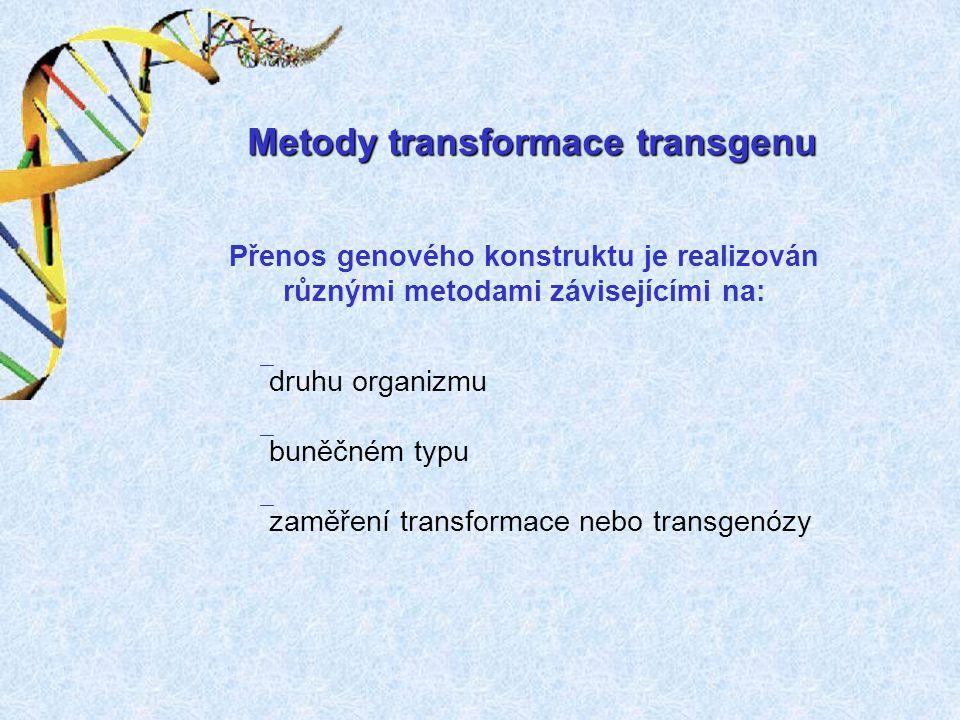Metody transformace transgenu Přenos genového konstruktu je realizován různými metodami závisejícími na: ` druhu organizmu ` buněčném typu ` zaměření