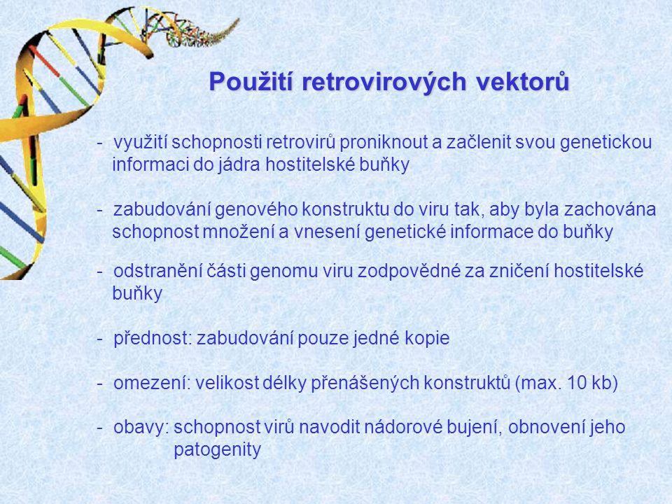 Použití retrovirových vektorů - využití schopnosti retrovirů proniknout a začlenit svou genetickou informaci do jádra hostitelské buňky - zabudování g