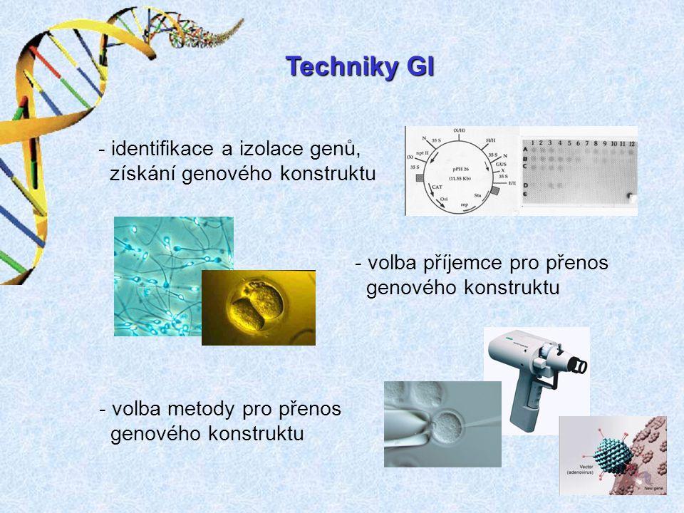 Techniky GI - identifikace a izolace genů, získání genového konstruktu - volba příjemce pro přenos genového konstruktu - volba metody pro přenos genov