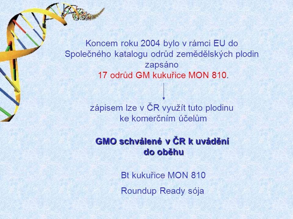 GMO schválené v ČR k uvádění do oběhu Koncem roku 2004 bylo v rámci EU do Společného katalogu odrůd zemědělských plodin zapsáno 17 odrůd GM kukuřice M