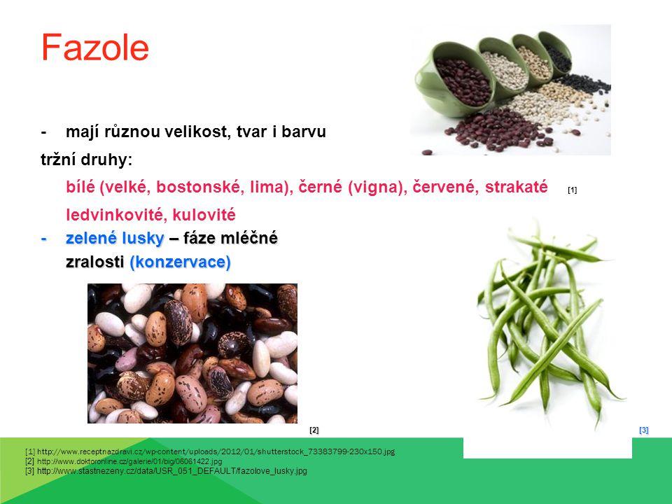 Fazole -mají různou velikost, tvar i barvu tržní druhy: bílé (velké, bostonské, lima), černé (vigna), červené, strakaté [1] ledvinkovité, kulovité -ze