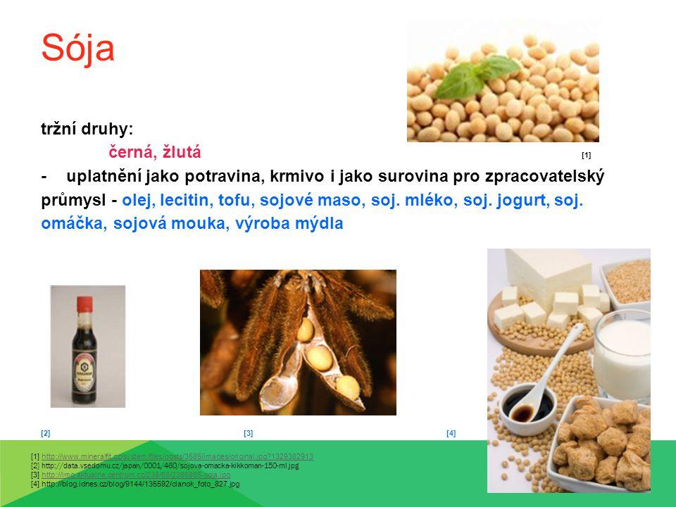Sója tržní druhy: černá, žlutá [1] -uplatnění jako potravina, krmivo i jako surovina pro zpracovatelský průmysl - olej, lecitin, tofu, sojové maso, so