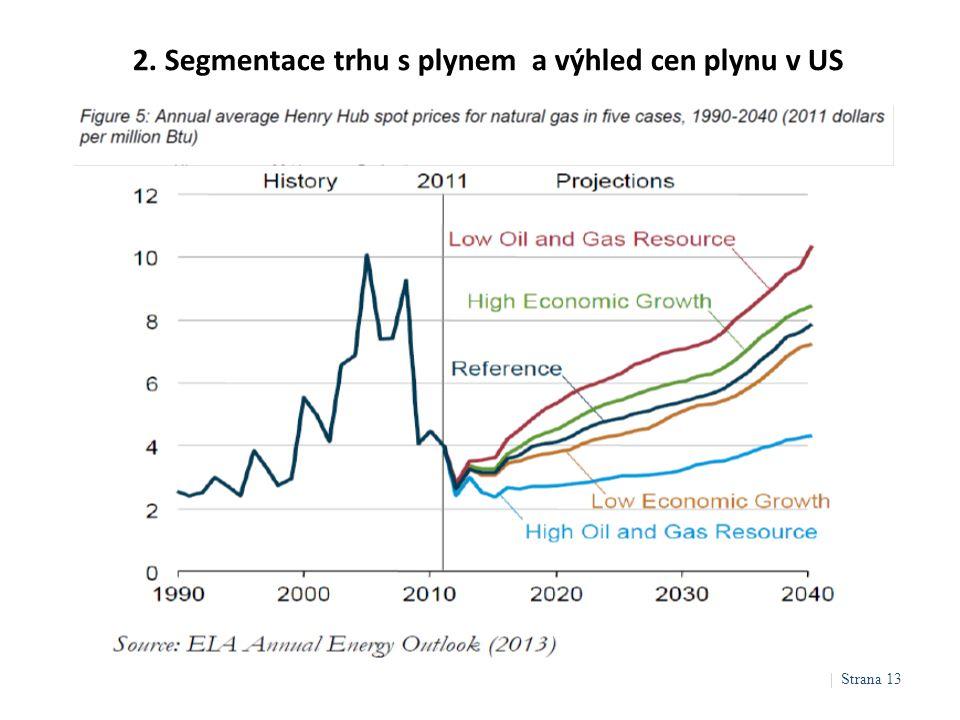 2. Segmentace trhu s plynem a výhled cen plynu v US | Strana 13