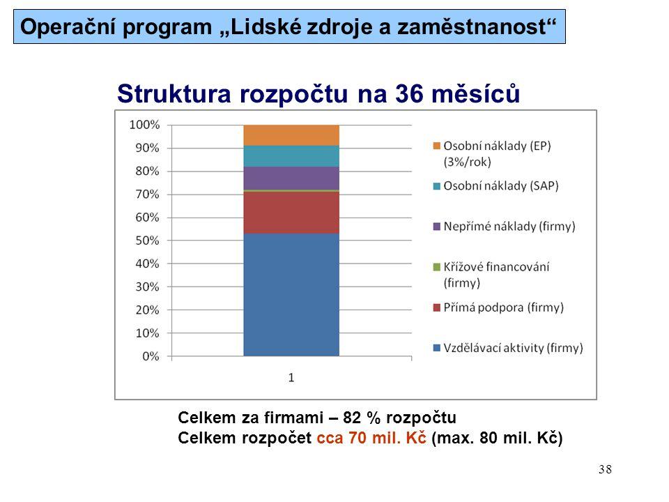 38 Struktura rozpočtu na 36 měsíců Celkem za firmami – 82 % rozpočtu Celkem rozpočet cca 70 mil.
