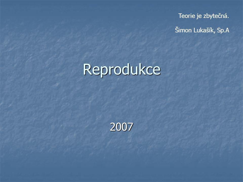 Reprodukce 2007 Teorie je zbytečná. Šimon Lukašík, Sp.A