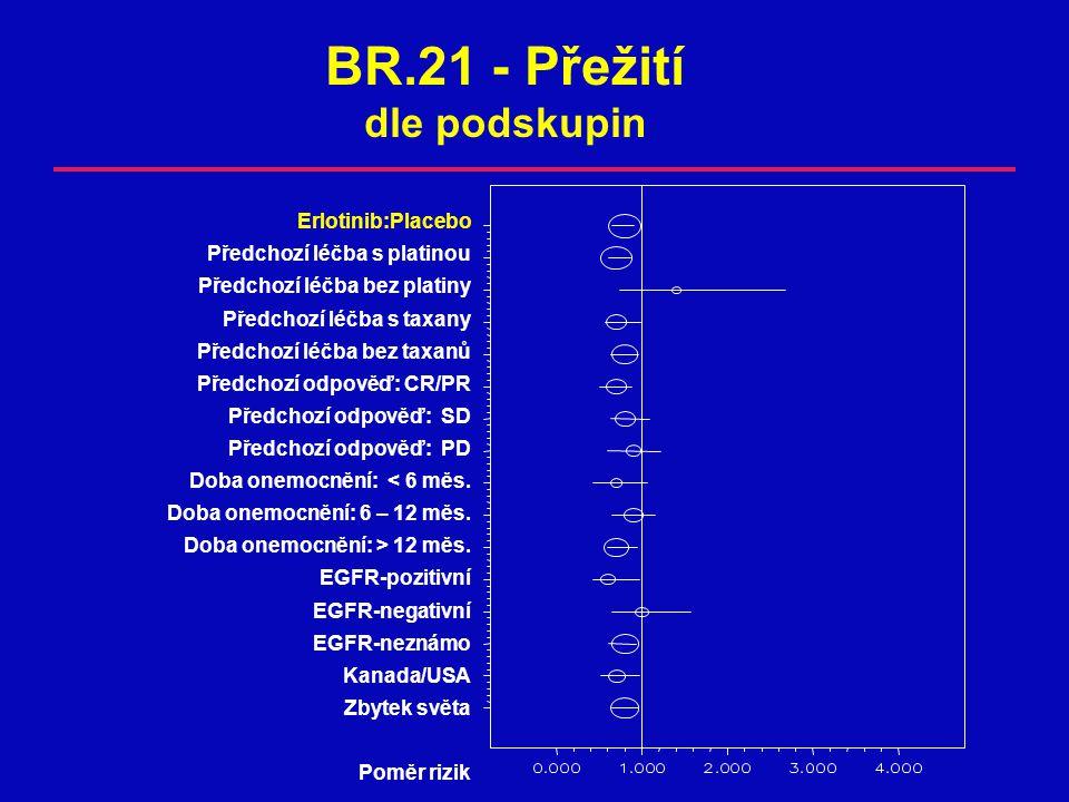 BR.21 - Přežití dle podskupin