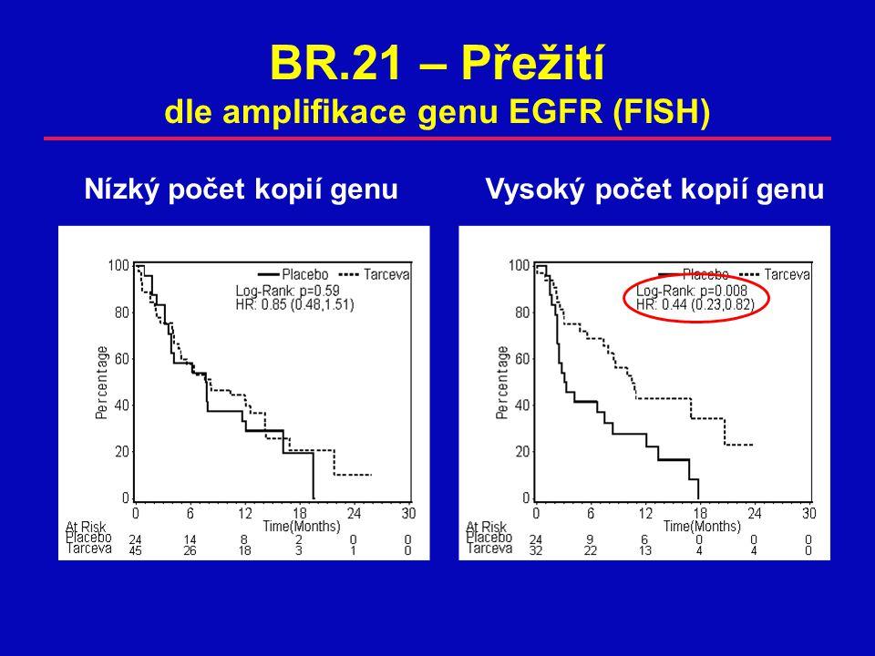 BR.21 – Přežití dle amplifikace genu EGFR (FISH) Nízký počet kopií genuVysoký počet kopií genu