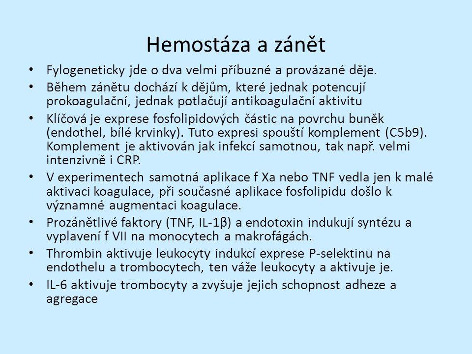 Hemostáza a zánět Fylogeneticky jde o dva velmi příbuzné a provázané děje.
