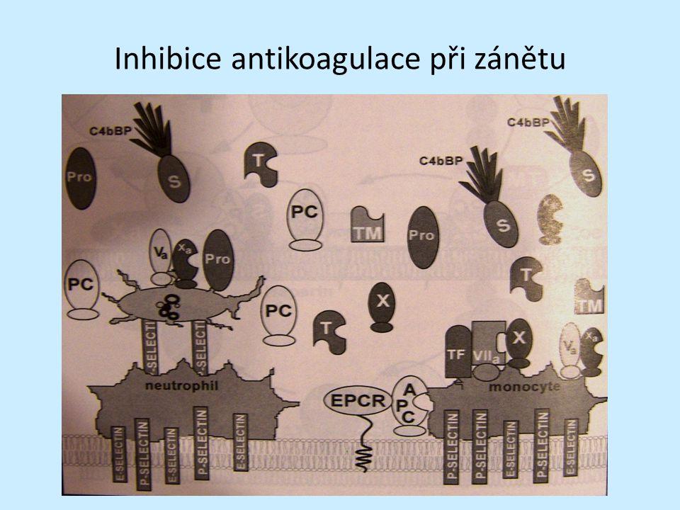 Inhibice antikoagulace při zánětu