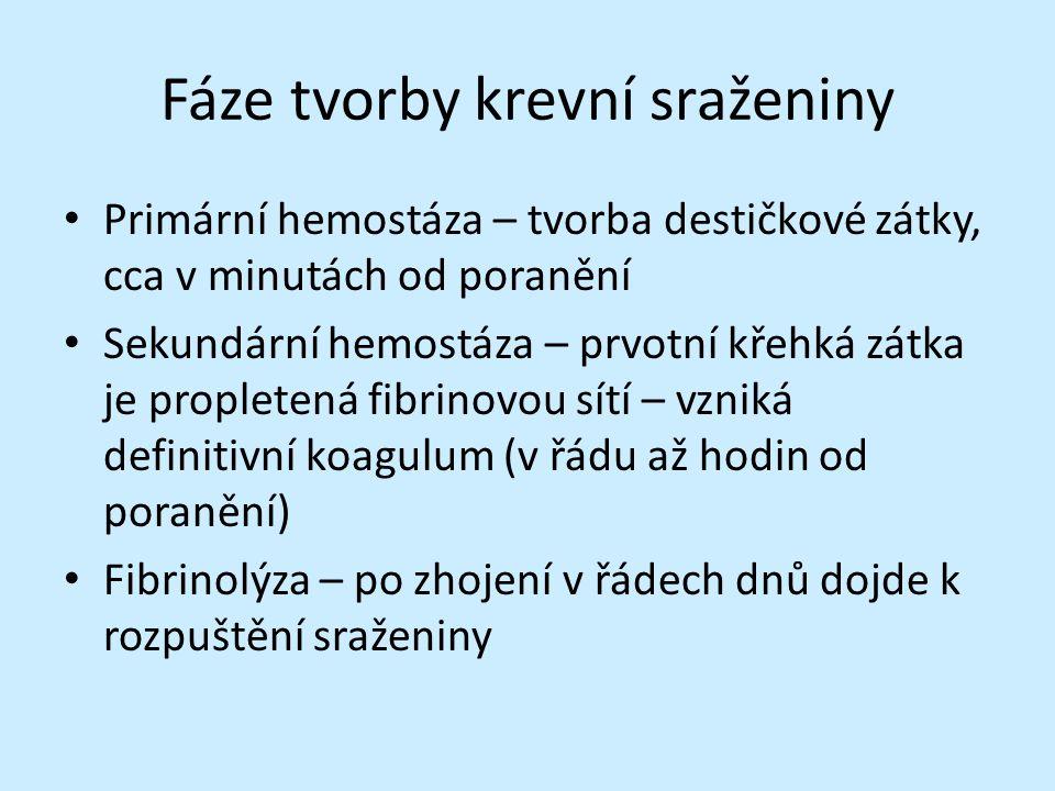 TEG - fibrinolýza