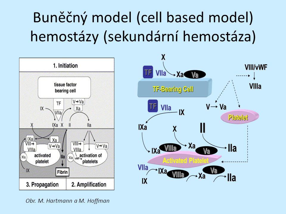 DIC Diagnostická kritéria dle International Society of Thrombosis and Hemostasis (ISTH) 2001 1.Je přítomno nějaké základní onemocnění – podmínka pro výskyt DIC, pokud ano, pak provést: počet trombocytů (KO), FDP nebo rozpustný fibrin, PT, fibrinogen 2.Trombocyty: 100 0 bodů 3.Fibrinové produkty: významné zvýšení 3 body, mírné zvýšení 2 body, nezvýšené 0 bodů 4.PT: prodloužení v sekundách oproti kontrole > 6 s 2 body, 3-6 s 1 bod, <3 s 0 bodů 5.Fibrinogen: <1 gram 1 bod DIC přítomna při 5 a více bodech Vysoká senzitivita