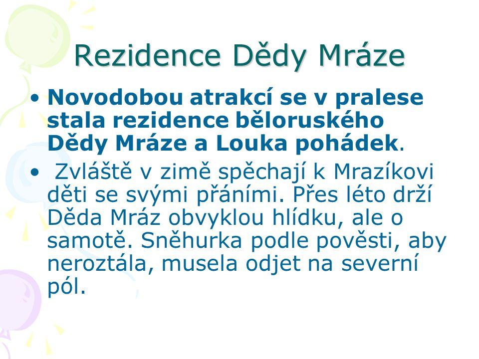 Rezidence Dědy Mráze Novodobou atrakcí se v pralese stala rezidence běloruského Dědy Mráze a Louka pohádek. Zvláště v zimě spěchají k Mrazíkovi děti s