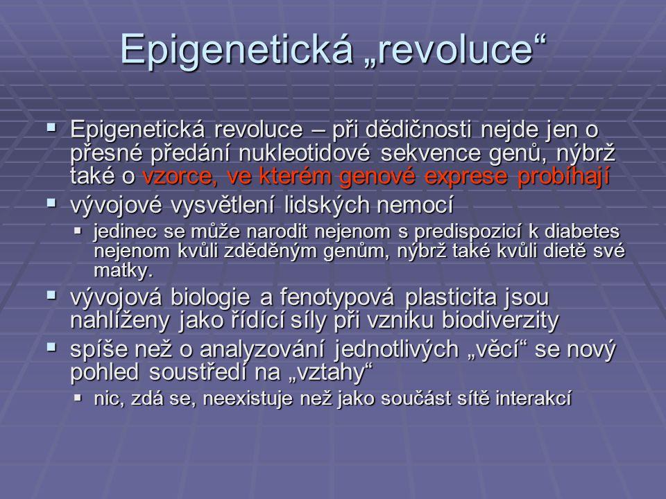 """Epigenetická """"revoluce  Epigenetická revoluce – při dědičnosti nejde jen o přesné předání nukleotidové sekvence genů, nýbrž také o vzorce, ve kterém genové exprese probíhají  vývojové vysvětlení lidských nemocí  jedinec se může narodit nejenom s predispozicí k diabetes nejenom kvůli zděděným genům, nýbrž také kvůli dietě své matky."""