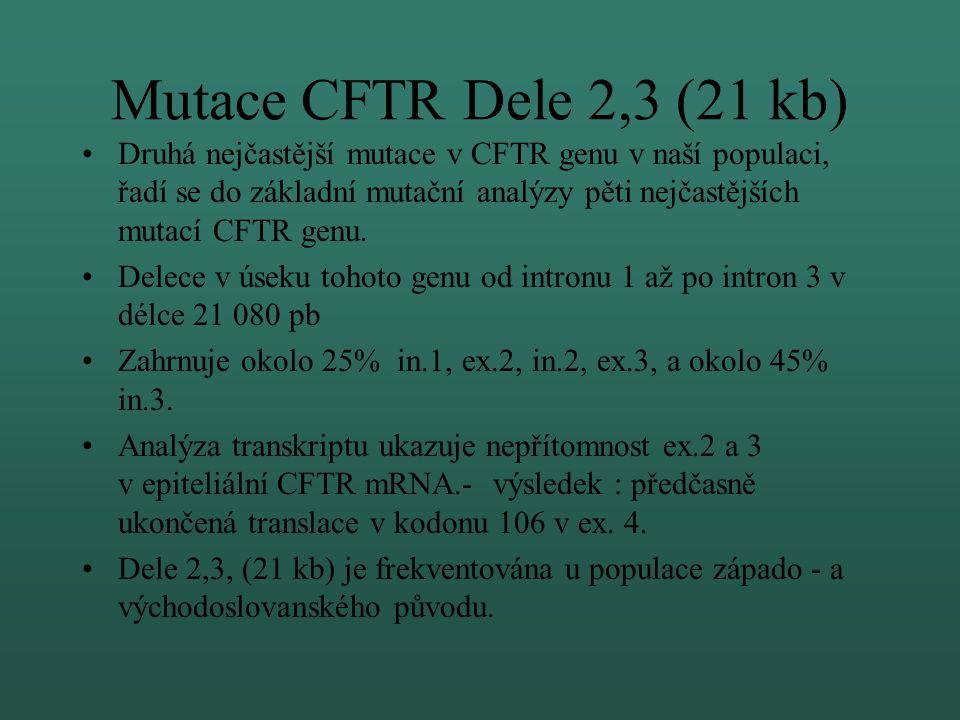 Přehled mutací CFTR genu vyšetřovaných na OLG, FN Brno Základní vyšetření: dF508, dele 2,3(21kb), G542X, G551D, R553X Rozšířené vyšetření: N1303K, 171